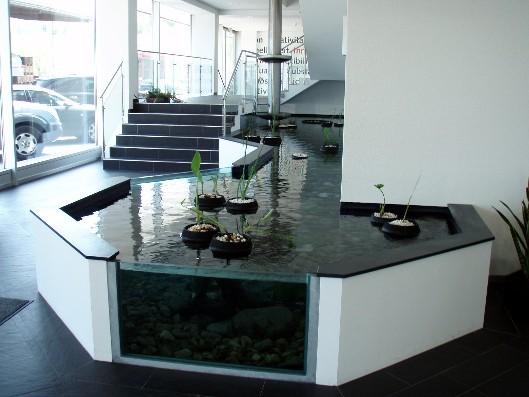 innenteich zimmerteich aquarien einrichtung das gro e axolotlforum. Black Bedroom Furniture Sets. Home Design Ideas